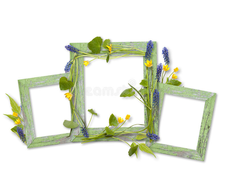Wooden frames decorated by spring flowers royalty free stock image