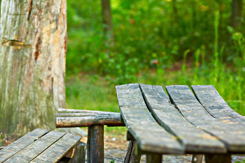 Wooden Garden bench with table in nature. stock image
