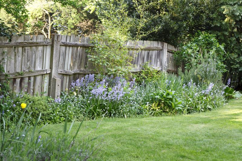 Wooden garden boundary fence royalty free stock images