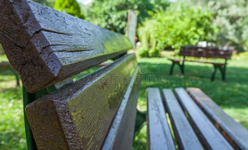 Wooden garden chair. Closeup for wooden garden chair royalty free stock image
