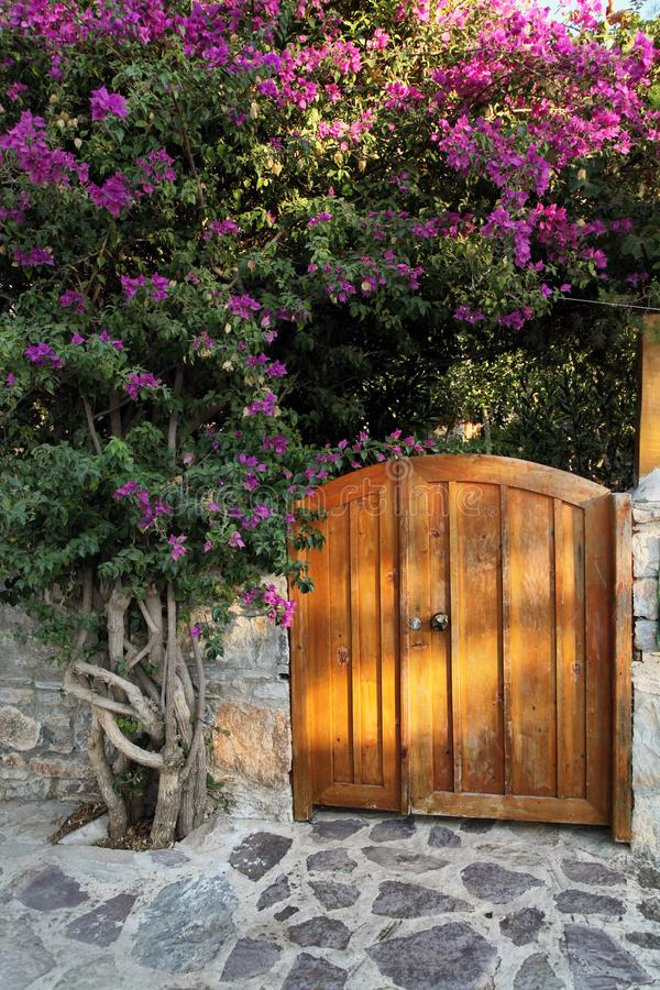 Wooden garden door royalty free stock photography