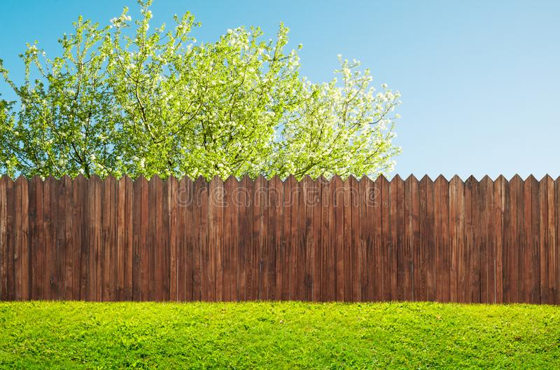 A wooden garden fence at backyard and bloom tree royalty free stock photography