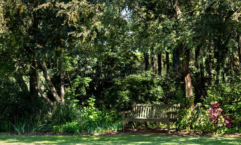 Wooden garden seat bench set in the shade of a large tree with many shrubs and green grass lawn in dappled sunlight stock photography