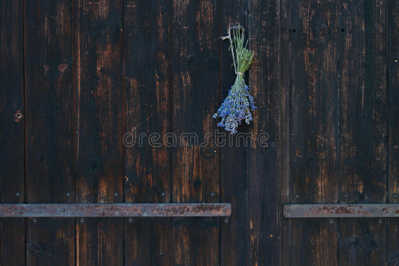 Wooden gate at cottage royalty free stock image