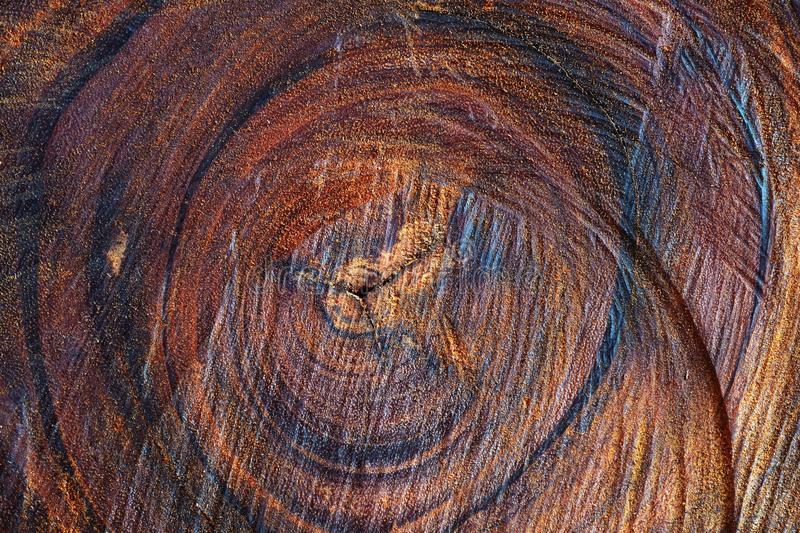 Wooden grain texture background royalty free stock photography