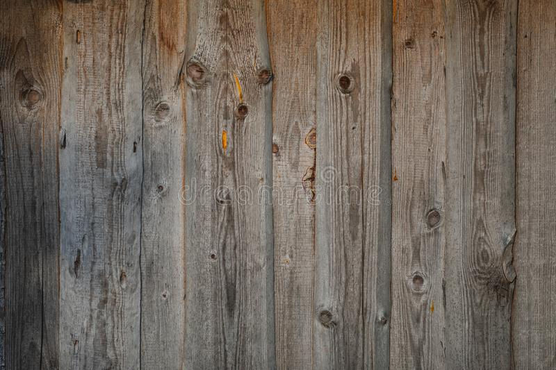 Wooden gray background texture many scratches pine. Grunge background texture a lot of scratches royalty free stock image
