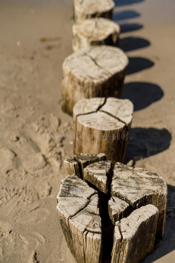 Wooden groynes at the baltic sea royalty free stock image