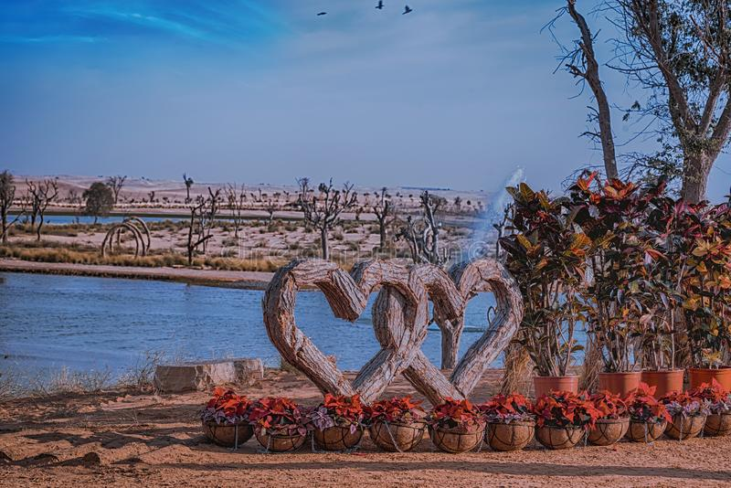 Wooden Heart Entangled at Dubai Love Lake stock photos