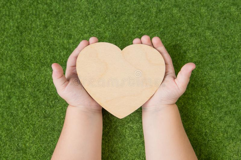 A wooden heart in the hands of a child against the background of a green grass. stock photos