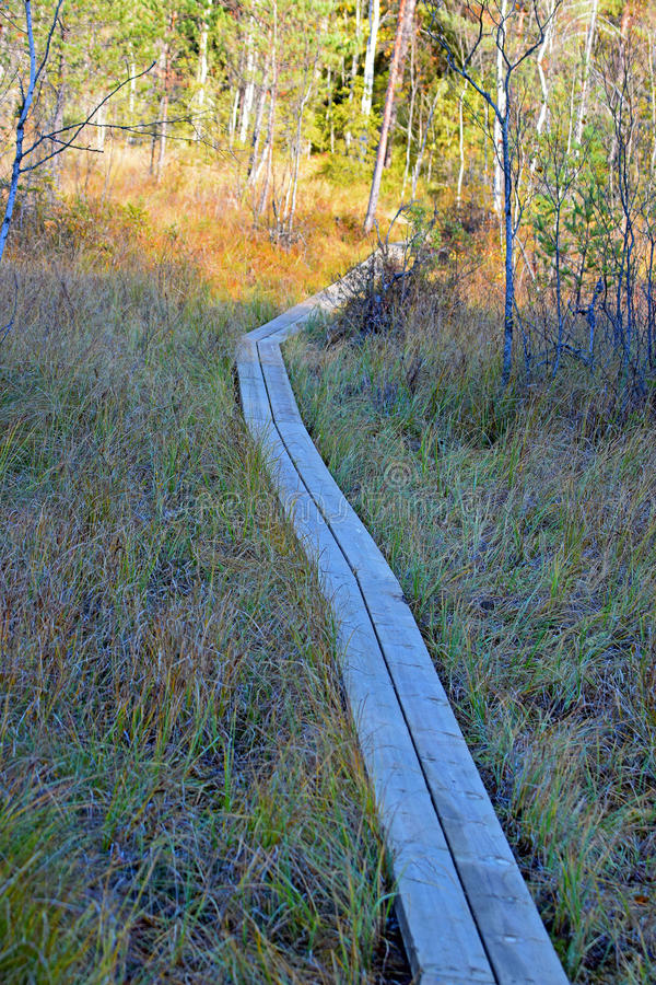 Wooden hiking trail stock photos