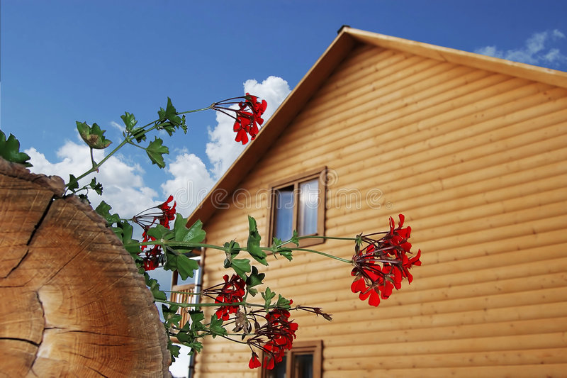 Wooden house. The wooden house on a background of the sky royalty free stock image