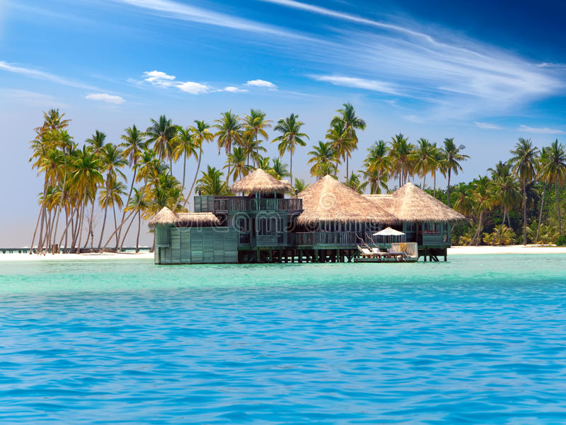 The Wooden House Against Palm Trees The Tropical Island Stock