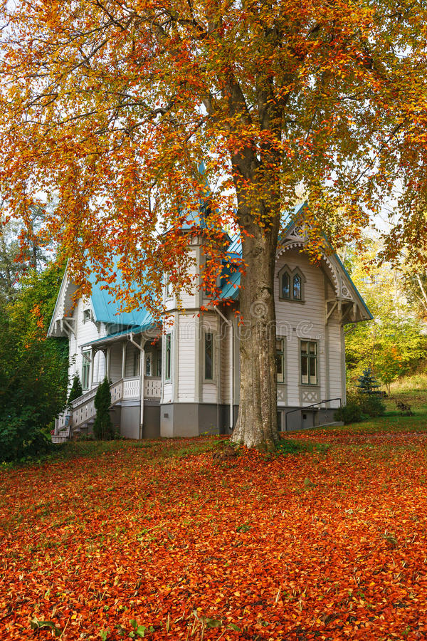 Wooden house with autumn colors royalty free stock photo