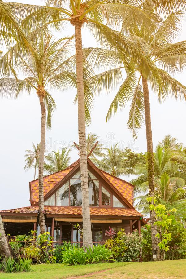 Wooden house in beautiful tropical nature. With coconut palms and green yard royalty free stock image