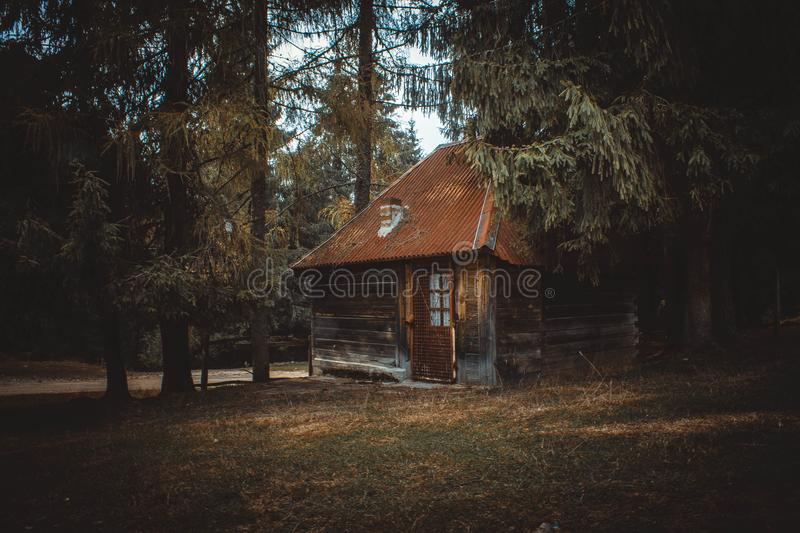 Wooden House on a Forest royalty free stock photos