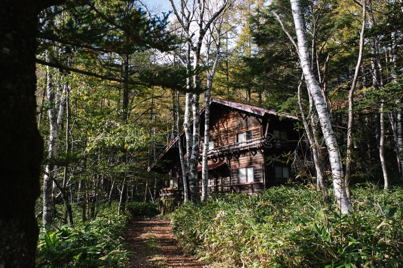 Wooden house in forest at Kamikochi National Park. royalty free stock images