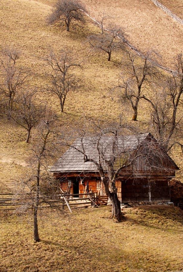 Wooden House on Hillside stock photo