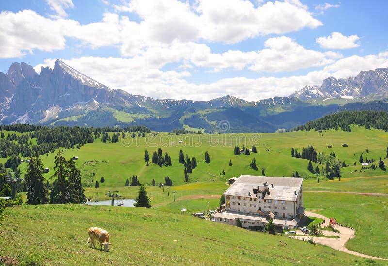 Wooden house in italian Alps. On summer stock photo