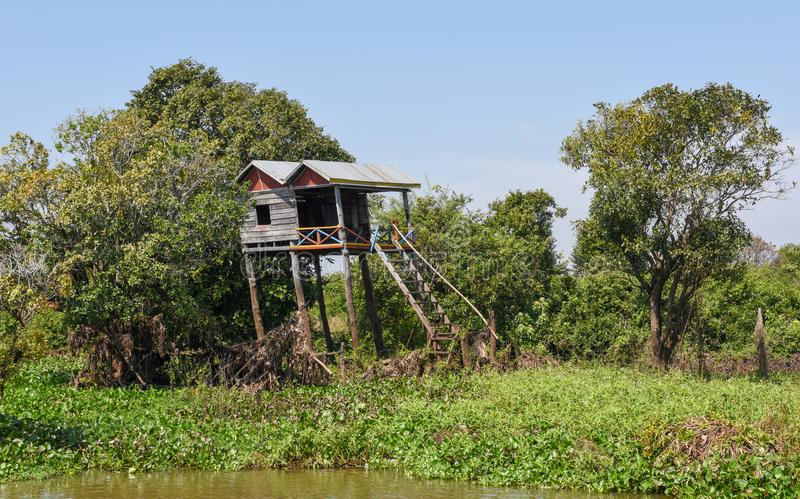 Wooden house in a tributary river to the Tonle Sap lake stock image