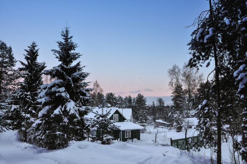 Wooden house in winter forest in evening royalty free stock photos