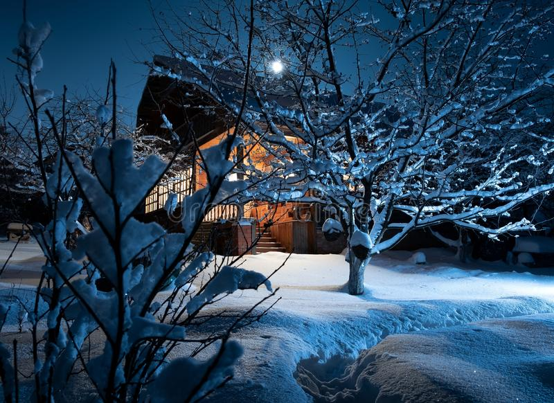 Wooden house in winter forest. night. moonlight royalty free stock photo
