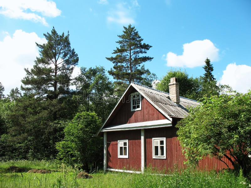 Download Wooden house in the woods stock photo. Image of elder - 18228904