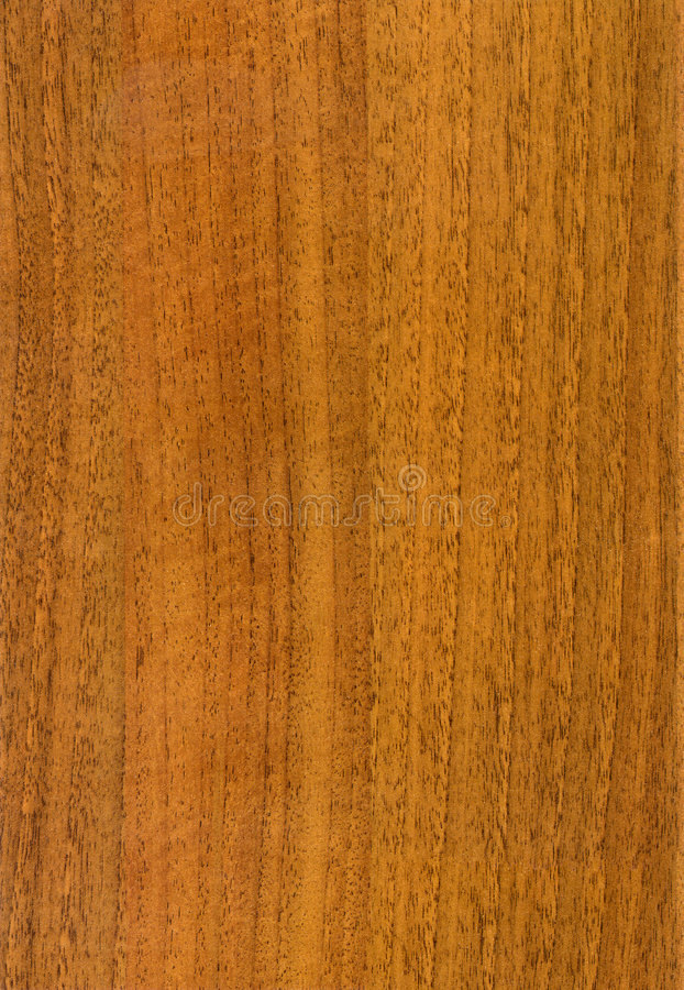 Download Wooden HQ  Walnut texture stock image. Image of parquet - 3497777