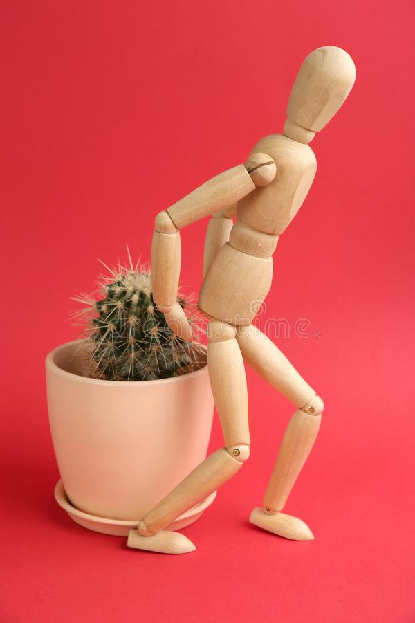 Wooden human figure and cactus on background. Hemorrhoid problems royalty free stock photography