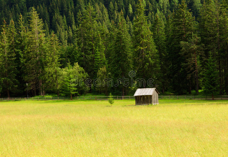 Download Wooden hut stock photo. Image of canazei, shelter, forest - 26232888