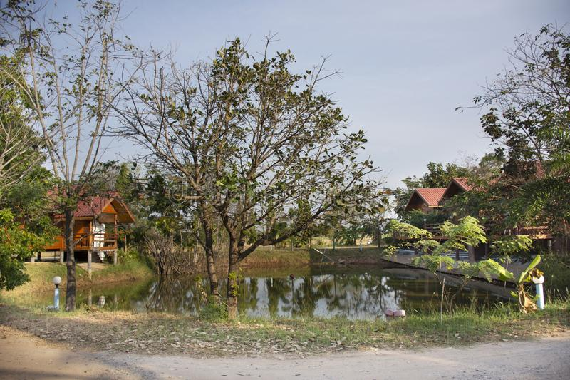 Wooden hut in garden of resort and homestay for thai people and foreigner travelers rent and rest in Chaiyaphum, Thailand. Wooden hut in garden of resort and royalty free stock photo