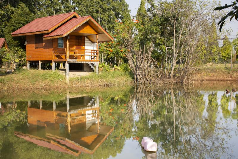 Wooden hut in garden of resort and homestay for thai people and foreigner travelers rent and rest in Chaiyaphum, Thailand. Wooden hut in garden of resort and stock photo