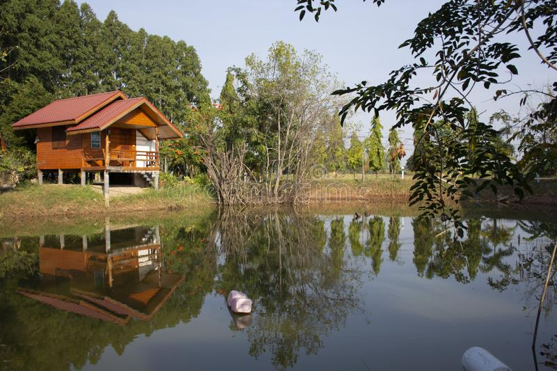 Wooden hut in garden of resort and homestay for thai people and foreigner travelers rent and rest in Chaiyaphum, Thailand. Wooden hut in garden of resort and royalty free stock images