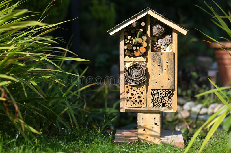 Download Wooden Insect House Garden Decorative Bug Hotel And Ladybird And  Stock Image   Image: