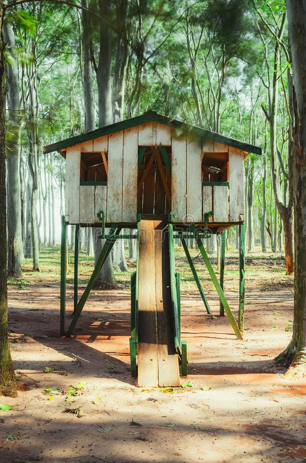 Wooden kids house surrounded by eucalyptus trees. stock image