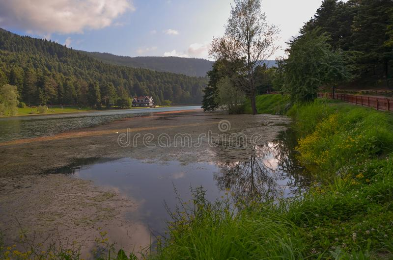 Wooden Lake house inside forest in Bolu Golcuk National Park royalty free stock image