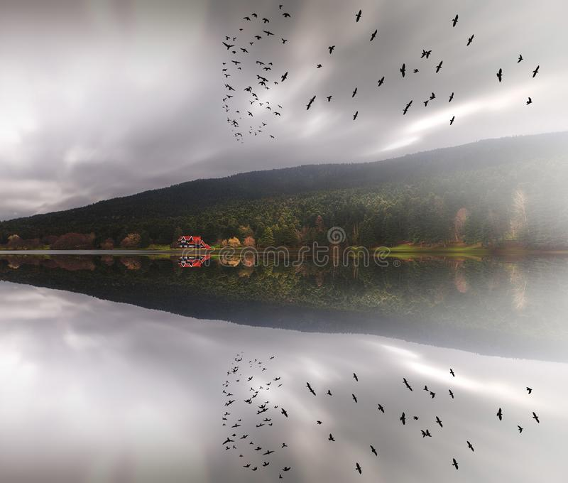 Golcuk Lake natural park with beautiful reflection in Bolu, Turkey. royalty free stock photos
