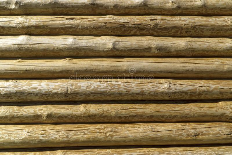 Wooden log pine wall background stock photos