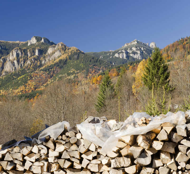 Free Wooden Logs In Autumn Royalty Free Stock Image - 34137266