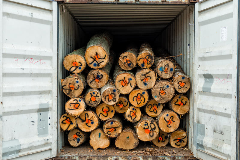 Wooden logs loading of the container. Wooden logs loading of the container at port warehouse field royalty free stock photo