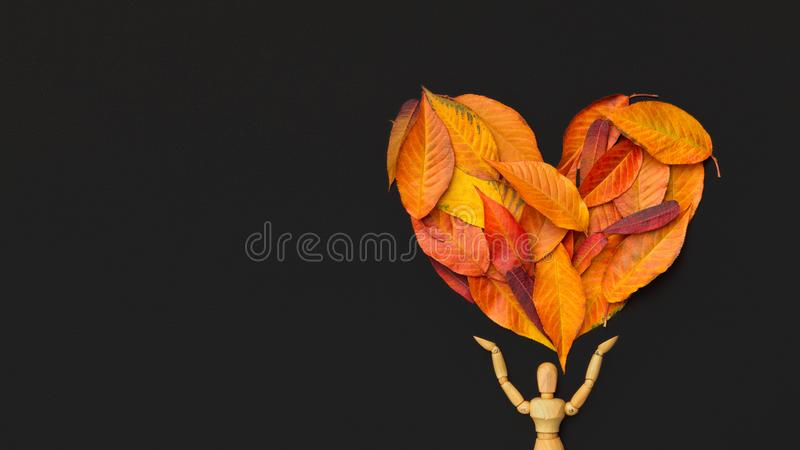 Wooden mannequin holding big heart of dry leaves on black royalty free stock photo