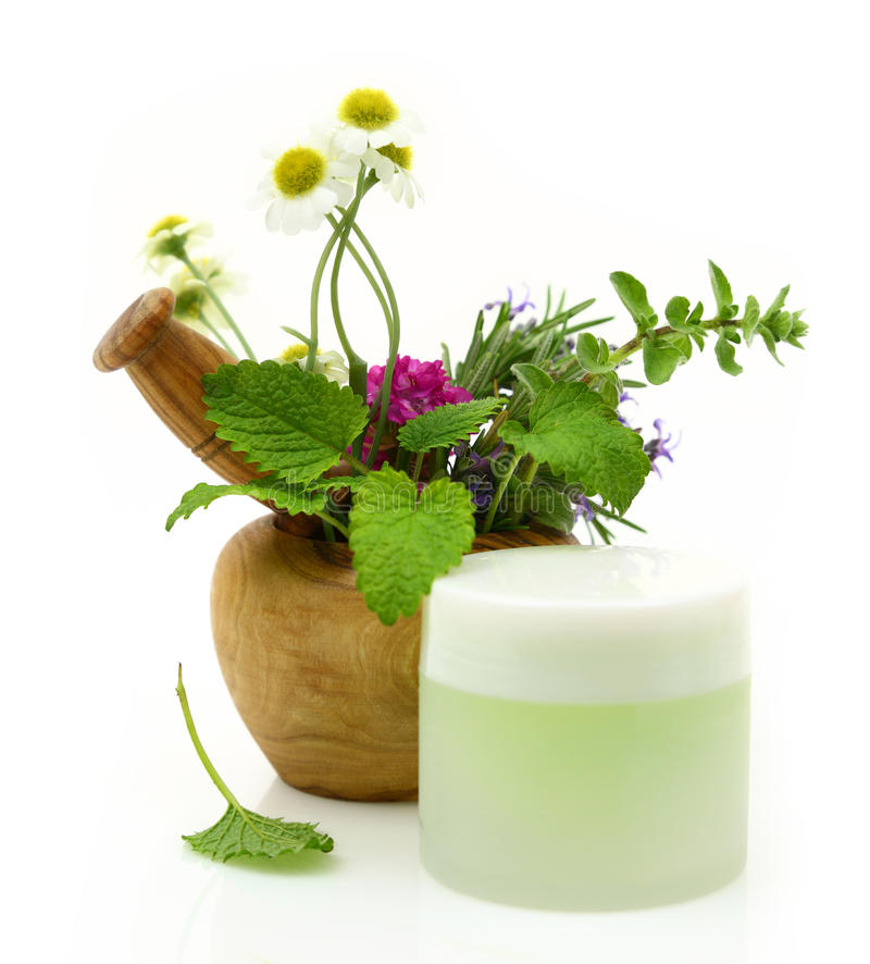 Wooden mortar with herbs and cosmetic cream stock image
