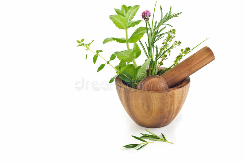 Wooden mortar and pestle with herbs stock image
