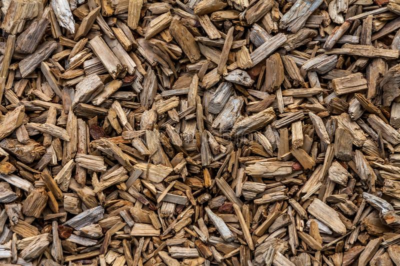 Wooden mulch surface royalty free stock photos