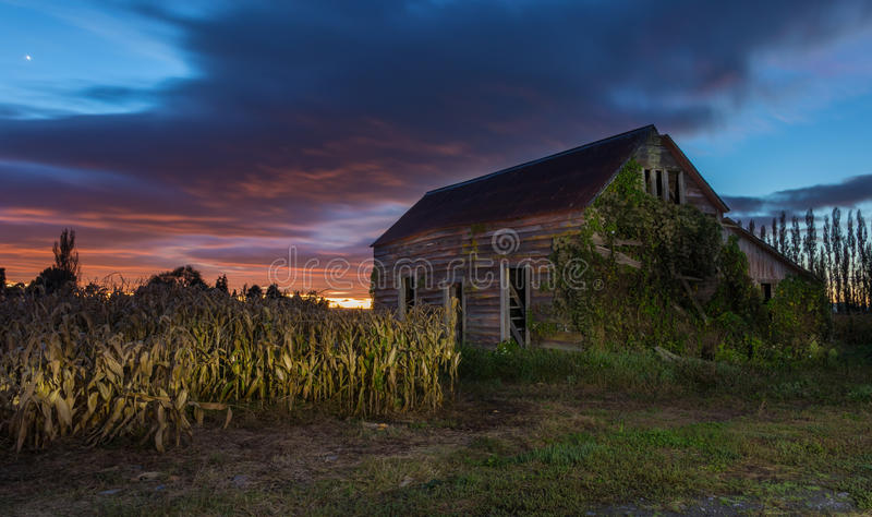 Download Wooden Old Shed stock image. Image of shed, growing, aged - 91513747