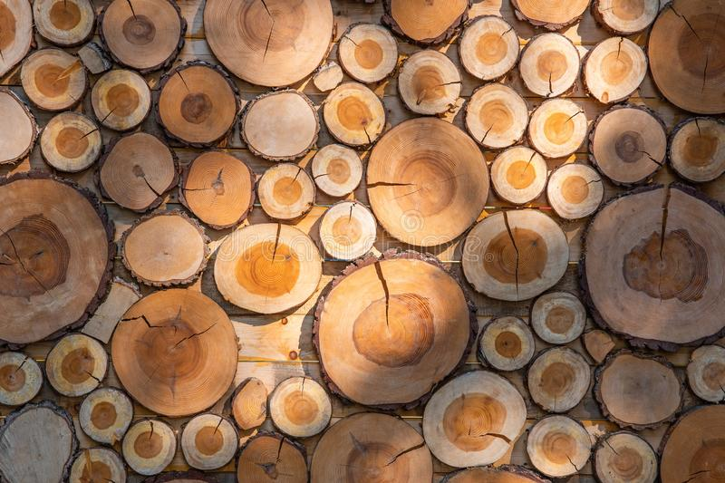 Wooden panel made of pieces of wood. royalty free stock image