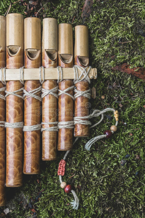 Wooden panflute stock image