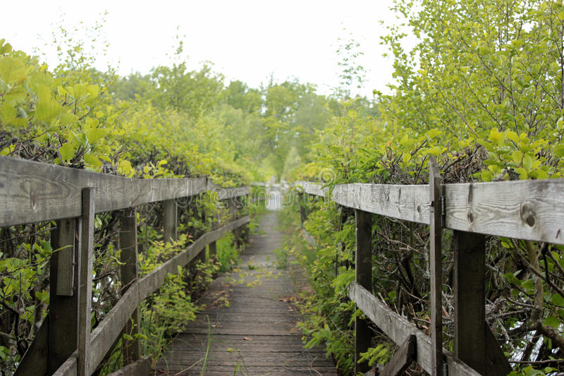 Download A wooden passage stock image. Image of nature, europe - 25400091