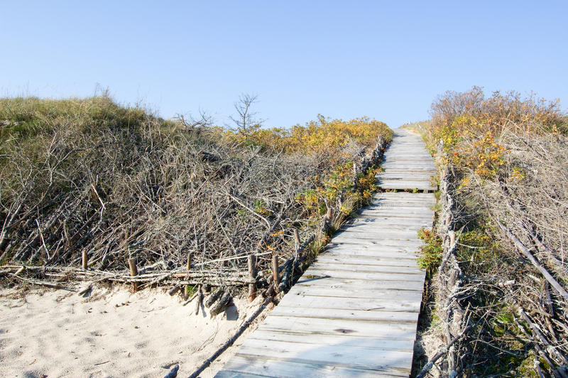 Download Wooden Path Stock Images - Image: 13395824