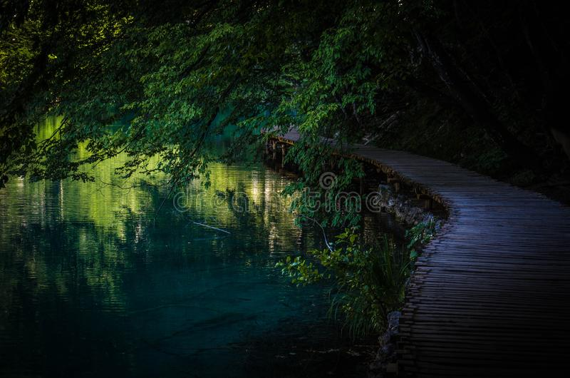Wooden path boardwalk bridge on water lake, National park Plitvice Lakes, Croatia, Europe royalty free stock photography