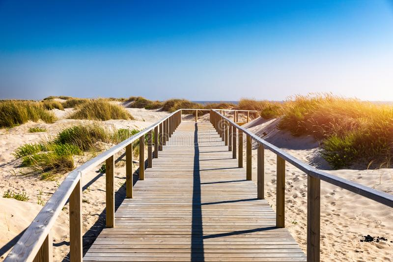 Wooden path at Costa Nova d'Aveiro, Portugal, over sand dunes with ocean view, summer evening. Wooden footbridge of Costa Nova. Beach in a sunny day. Aveiro royalty free stock images
